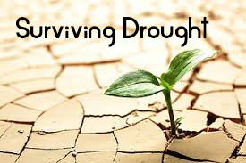 Surviving drought (the difficult times of life)