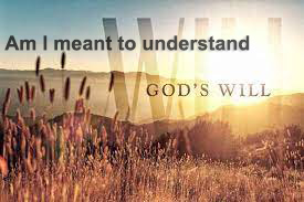 Am I Meant To Understand God's Will?